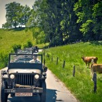 willys2013-39 Kopie_out